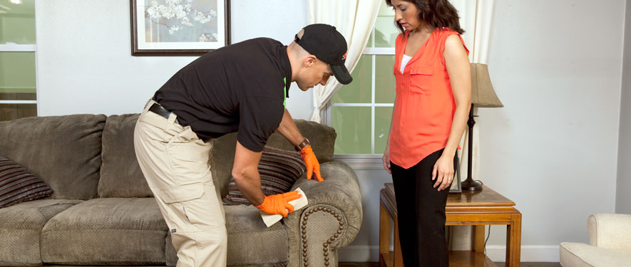 Traverse City, MI carpet upholstery cleaning